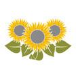flowers sunflower vector image
