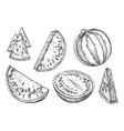 set isolated watermelon slices in vintage style vector image vector image