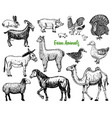 farm cute animal big set vector image vector image