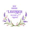 frame lavender flowers vector image vector image