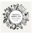 hand sketched herbal tea ingredients wreath vector image vector image