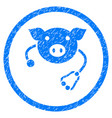 pig veterinary rounded grainy icon vector image vector image