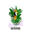 summer surf board vector image vector image