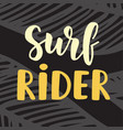 surf rider poster surfing theme vector image vector image
