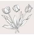 Bouquet of TulipSketch Black and White vector image vector image