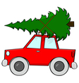 Car carrying tree vector image vector image