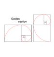 Double golden spiral vector image