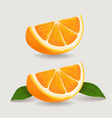 fresh orange fruit slice with green leaves vector image vector image