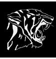 Hand-drawn pencil graphics tiger head Engraving vector image