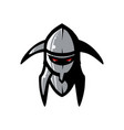 picture of helmet of the viking vector image vector image