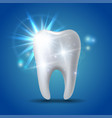 white shining tooth concept whitening human vector image vector image