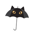 black cat umbrella vector image vector image