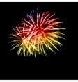 fireworks in night sky vector image