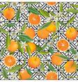 Seamless Pattern Orange Fruits Background vector image vector image
