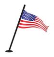 USA flag resize vector image