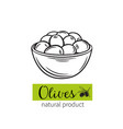 drawn olives in a bowl vector image vector image