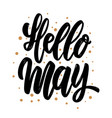 hello may lettering phrase for poster card banner vector image