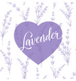 label of lavender over pattern vector image vector image
