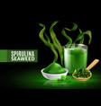 spirulina realistic composition vector image vector image