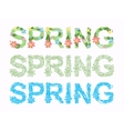 Word spring in floral font