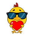 yellow chick with sunglasses cartoon character vector image vector image
