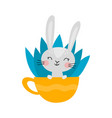 cute rabbit character in cup for easter isolated vector image vector image