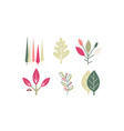 flat set different colorful leaves vector image vector image