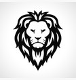 lion head icon design vector image