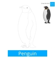 Penguin bird learn to draw vector image vector image