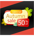 special autumn sale 50 maple leaf background vect vector image