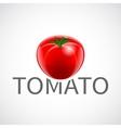 Tomato realistic poster vector image vector image