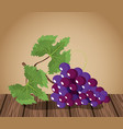 wine grapes design on wooden table vector image vector image