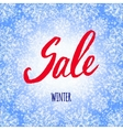 Winter sale poster design template or Background vector image vector image