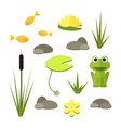 cartoon garden pond elements with water vector image