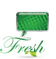 fresh 06 resize vector image vector image