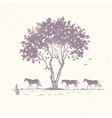 horse silhouette and tree vector image vector image