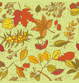 seamless pattern sketch branches with vector image vector image