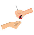 hands with screwdriver tool isolated icon vector image