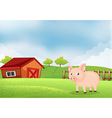 A pig in the farm with barn vector image vector image