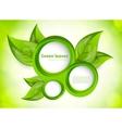 Background with circles and leaves vector image vector image