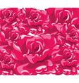 Beautiful Bright Roses vector image