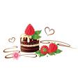 chocolate raspberry vector image vector image