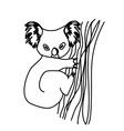 koala cartoon drawing vector image