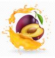 plum juice splash realistic fresh fruit vector image