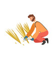 agricultural worker cutting straw scy vector image