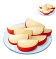 apple slices detailed icon isolated vector image vector image