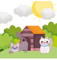cats cartoon in grass with house pets vector image