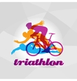 Color flat logo triathlon figures vector image vector image