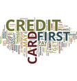 first credit card text background word cloud vector image vector image