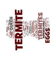 termite eggs text background word cloud concept vector image vector image